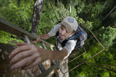 Nick climbing to canopy platform in Maliau Basin, Borneo