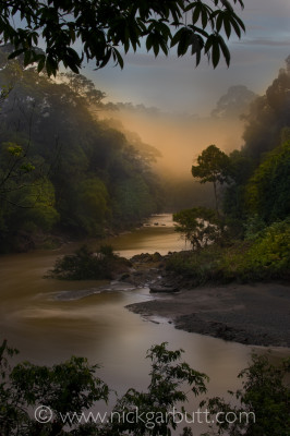 Mist hanging over Segama River