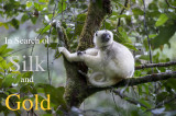 Saevus March 2015 Madagascar: In Search of Silk and Gold