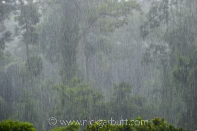 Do not underestimate just how torrential downpours can be in a tropical rainforest. It is all but impossible to stay dry.