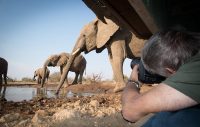 The photo opportunities from a waterhole hide are spectacular