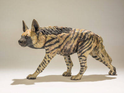 A ceramic striped hyena: one of India's lesser known carnivores